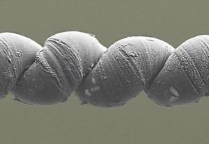 Углеродные нанотрубки превратили в аналог мышцы