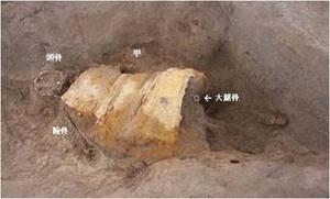 В Японской Помпее нашли останки воина в доспехах