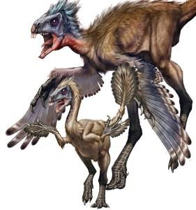 Динозавры из семейства симиликаудиптериксов