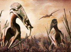 Летающие рептилий были убийцами