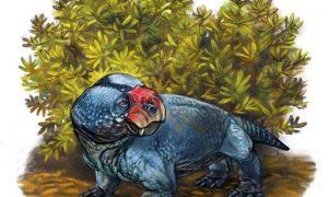 Найден неизвестный древнейший предок современных млекопитающих