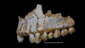 Самолечением занимались еще неандертальцы
