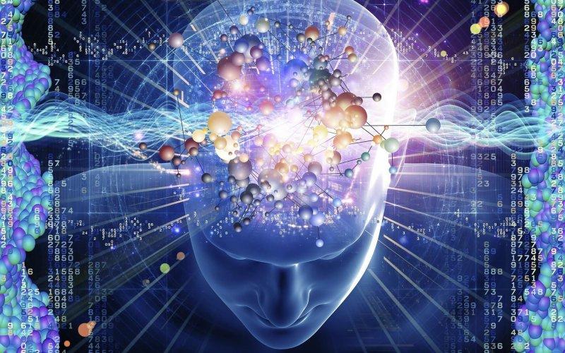 Мы наследуем наш разум от наших матерей?